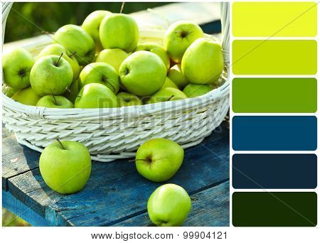 Green apples with bouquet of wildflowers and palette of colors