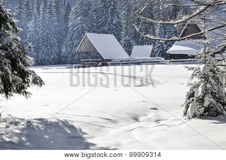 Winter Mountain Landscape With Falling Snow