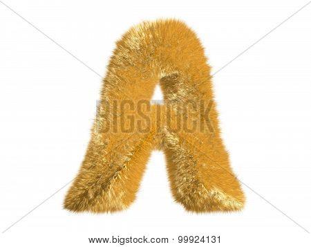 Letter A from fur fox alphabet