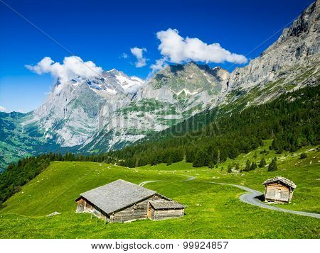 Alps scenery with Grindelwald Village in Berner Oberland Switzerland Swiss