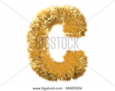 Letter C from fur fox alphabet