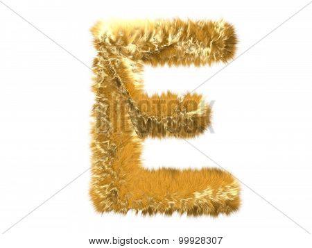 Letter E from fur fox alphabet