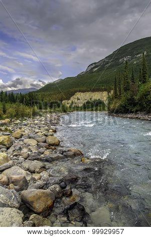 Wild Montana Mountain Stream