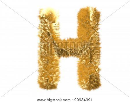 Letter H from fur fox alphabet