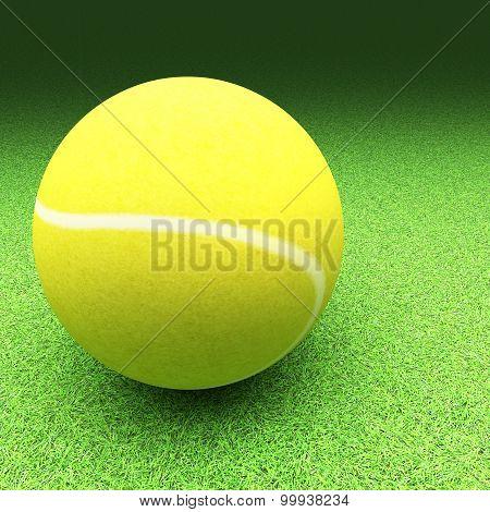 Tennis Over Lawn Ground