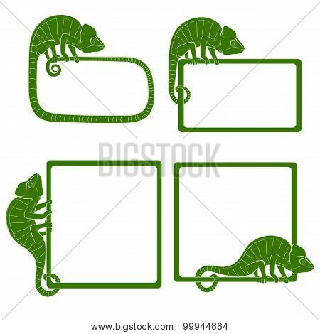 Set of icons with green chameleon. Vector illustration.