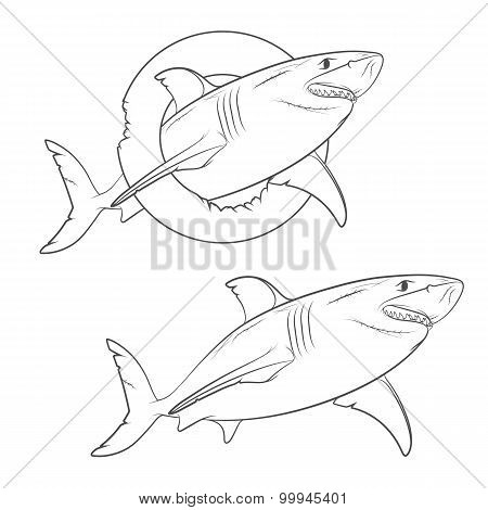 Vector drawing of a terrible shark. Isolated objects on a white background.