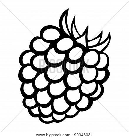 Vector Monochrome Illustration Of Raspberry Logo.