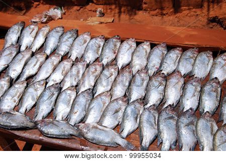 Fresh Fish Exposed On The Market Stalls Of The Village Pomerini In Tanzania, Africa 714