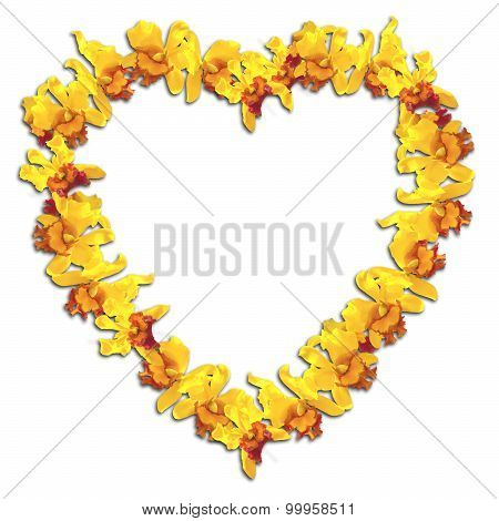 Heart Frame Yellow Orchid On White Background