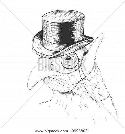 Interesting bird in black top hat and monocle. Sketch.