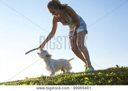 portrait of beautiful girl keeping pretty white West Highland dog outdoor