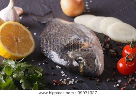 Raw Dorado Fish With Ingredients Macro. Horizontal
