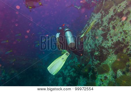 Scuba Diver On Coral Reef In Clear Blue Water