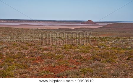 the red desert