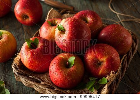 Raw Red Fuji Apples