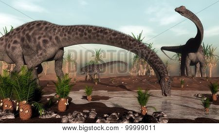 Diplodocus dinosaurs herd going to drink - 3D render
