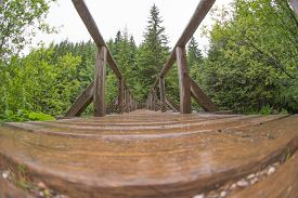 picture of distort  - View of wooden bridge over the river  - JPG