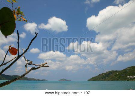Beach-tortola
